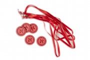 alephchamp_hebrew_reading_champion_aleph_alef_black_level_pro_red_medallions